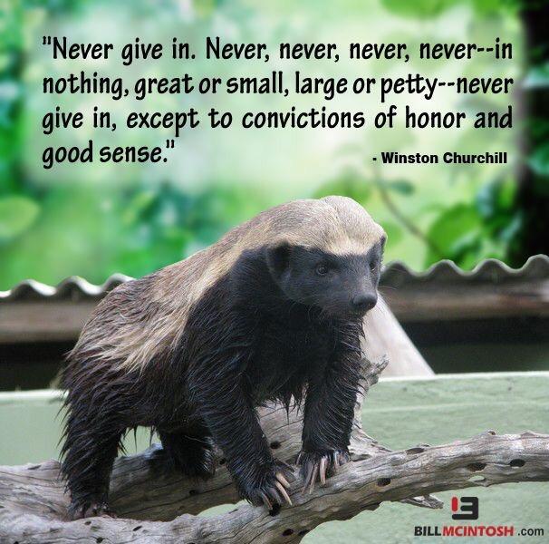 Motivational Monday+motivational quotes+motivational+motivation+inspirational quotes+inspirational+inspiration