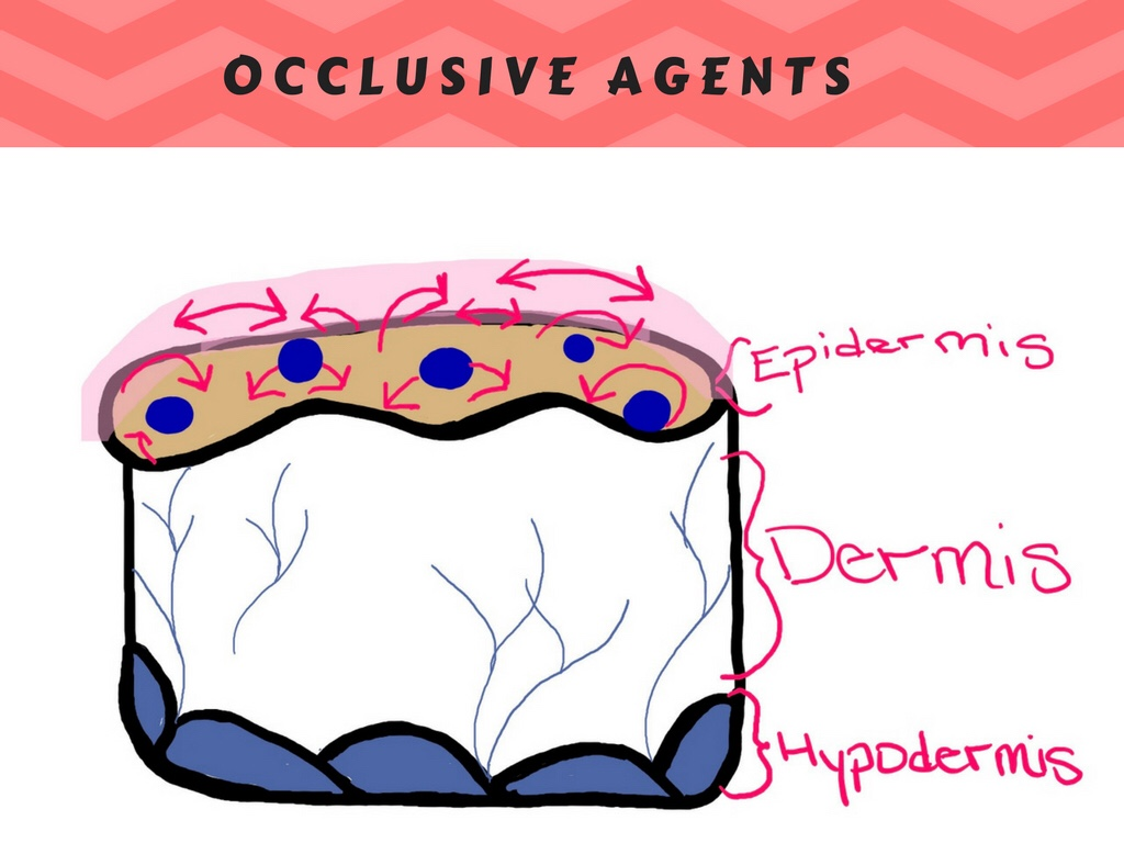 Moisturizers: humectants. occlusive agents. emollients. Occlusive agents moisturizer